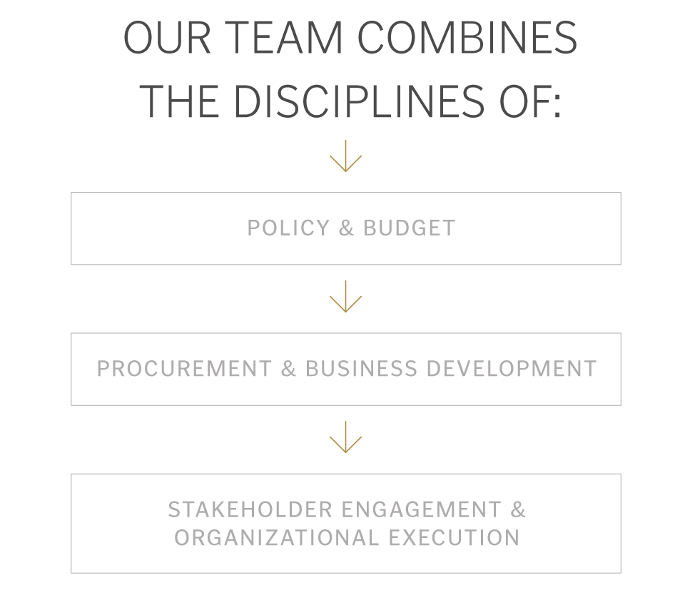 Insights:  Team Disciplines